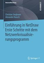 Einfuhrung in NetDraw