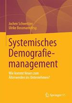 Systemisches Demografiemanagement