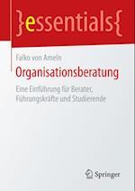 Organisationsberatung