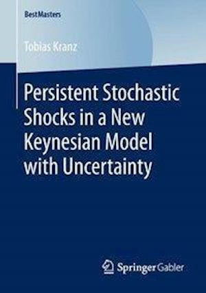 Persistent Stochastic Shocks in a New Keynesian Model with Uncertainty