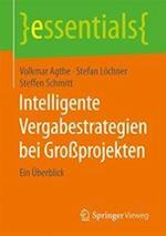 Intelligente Vergabestrategien Bei Groprojekten (Essentials)