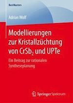 Modellierungen Zur Kristallzuchtung Von Crsb2 Und Upte (Bestmasters)