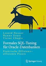Formales SQL-Tuning Fur Oracle-Datenbanken (Xpert.press)