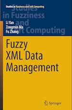Fuzzy XML Data Management (Studies in Fuzziness and Soft Computing, nr. 311)
