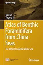 Atlas of Benthic Foraminifera from China Seas (Springer Geology)