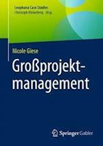 Groprojektmanagement