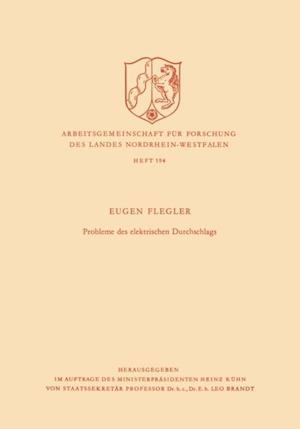 Probleme des elektrischen Durchschlags af Eugen Flegler
