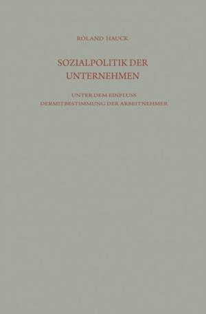 Sozialpolitik der Unternehmen unter dem Einflu der Mitbestimmung der Arbeitnehmer af Roland Hauck