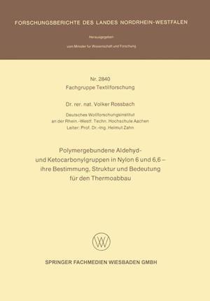 Polymergebundene Aldehyd- Und Ketocarbonylgruppen in Nylon 6 Und 6, 6 -- Ihre Bestimmung, Struktur Und Bedeutung Für Den Thermoabbau