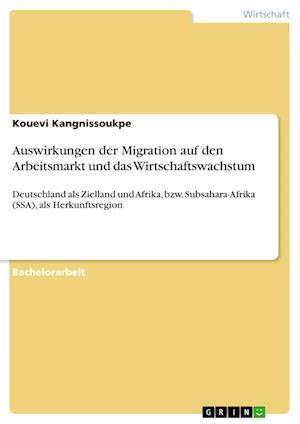 Bog, paperback Auswirkungen Der Migration Auf Den Arbeitsmarkt Und Das Wirtschaftswachstum af Kouevi Kangnissoukpe