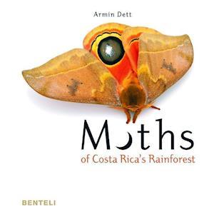 Moths of Costa Rica's Rainforest