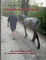 Schlachthaus Der Lipizzaner