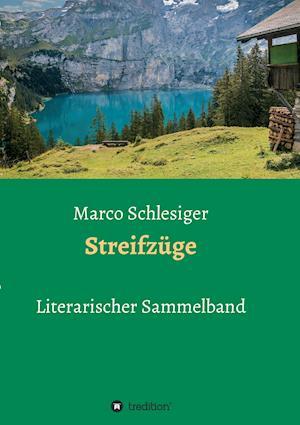 Bog, paperback Streifzuge af Marco Schlesiger