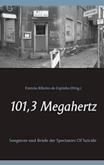 101,3 Megahertz