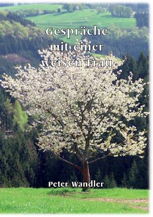 Bog, paperback Gesprache Mit Einer Weisen Frau af Peter Wandler