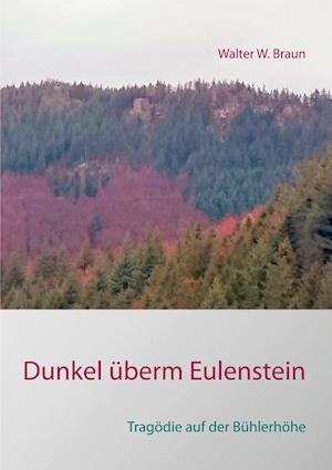 Bog, paperback Dunkel Uberm Eulenstein af Walter W. Braun