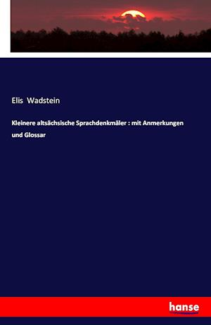 Bog, paperback Kleinere Altsachsische Sprachdenkmaler af Elis Wadstein