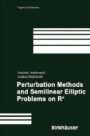 Perturbation Methods and Semilinear Elliptic Problems on R^n
