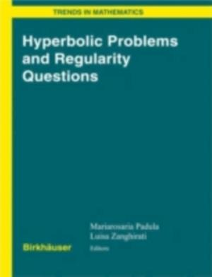 Hyperbolic Problems and Regularity Questions