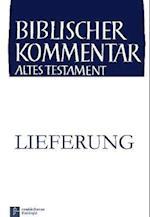 Deuteronomium (2,7-3,11) af Lothar Perlitt