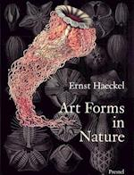 Art Forms in Nature af Richard Hartmann, Olaf Breidbach, Irenaus Eibl Eibersfeldt