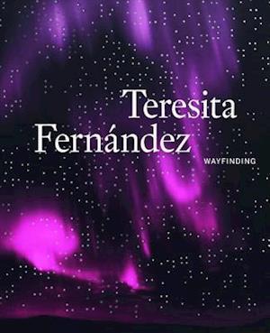 Teresita Fernandez: Wayfinding