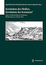 Revolution Des Fleisses, Revolution Des Konsums