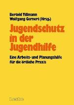 Jugendschutz in Der Jugendhilfe af Bertold Tillmann