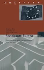 Sozialraum Europa af Jurgen Boeckh, Ernst-Ulrich Huster, Benjamin Benz