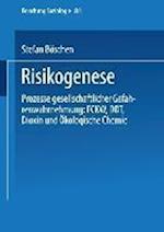 Risikogenese af Stefan Boschen, Stefan Boschen