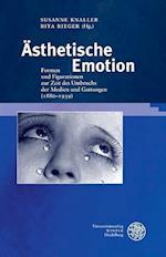 Asthetische Emotion (Germanisch romanische Monatsschrift Beihefte, nr. 73)