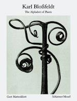 Karl Blossfeldt: Alphabet of Plants