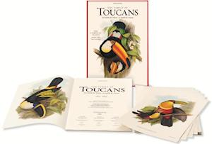 John Gould, Family of Toucans