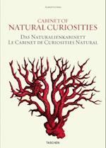 Albertus Seba, Cabinet of Natural Curiosities