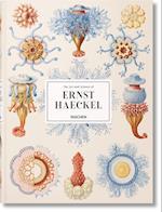 Ernst Haeckel af Taschen
