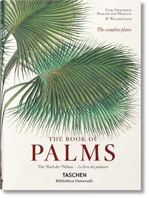 Bog, hardback Martius. The Book of Palms af H Walter Lack