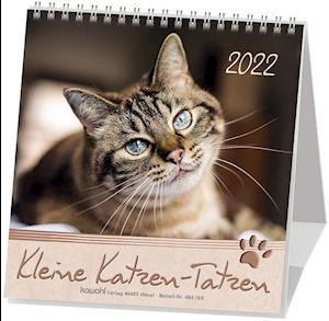 Kleine Katzen-Tatzen 2020. Postkarten-Kalender