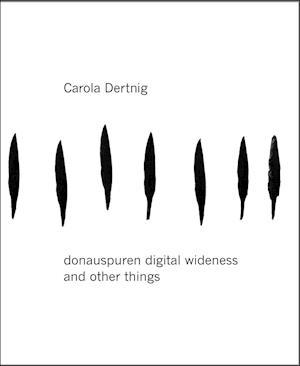 Carola Dertnig. donauspuren digital wideness and other things