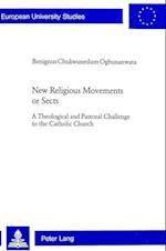 New Religious Movements or Sects (EUROPAISCHE HOCHSCHULSCHRIFTEN REIHE XXIII, THEOLOGIE, nr. 720)