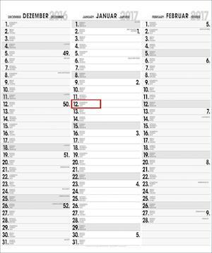 3-Monatsplaner XL Format 2020