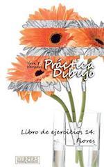 Practica Dibujo - Libro de Ejercicios 14