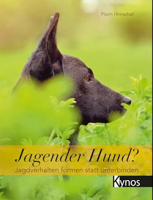 Jagender Hund?