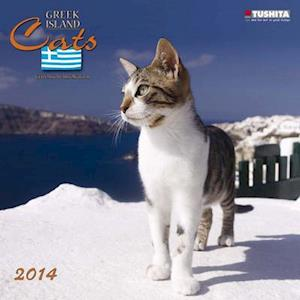 Greek Island Cats 2014