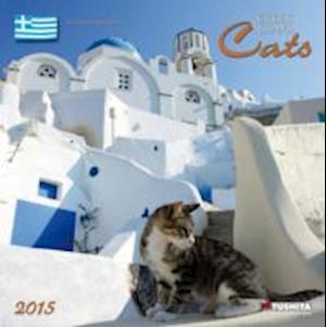 Greek Island Cats 2015
