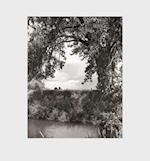 Robert Adams: Cottonwoods