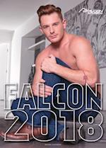 Falcon 2018 Calendar