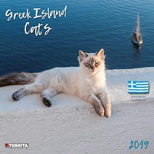 Greek Island Cats 2019