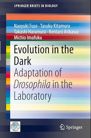Evolution in the Dark: Adaptation of Drosophila in the Laboratory