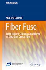 Fiber Fuse (NIMS Monographs)