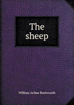 The Sheep af William Arthur Rushworth